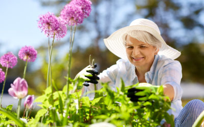 Spring Clean Your Garden for Summer